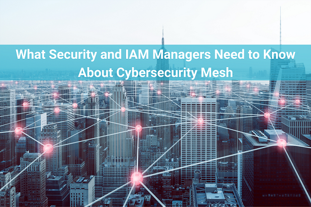 What security and IAM professionals need to know about cybersecurity mesh