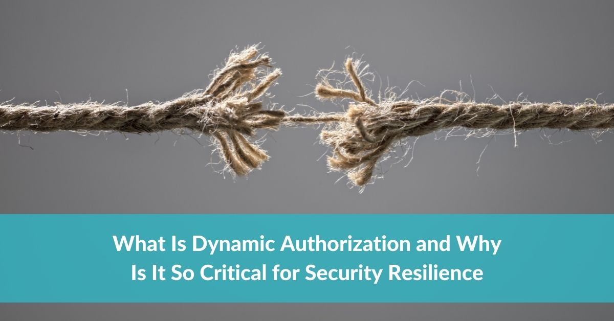What Is Dynamic Authorization